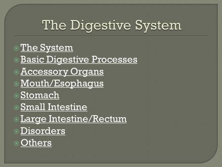  The System The System  Basic Digestive Processes Basic Digestive Processes  Accessory Organs Accessory Organs  Mouth/Esophagus Mouth/Esophagus  Stomach.
