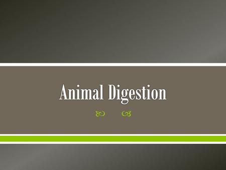 . 1. 2. 3. A. B. C.  Sort animals by their digestive systems  Describe and compare different types of digestive systems  Demonstrate the functions.