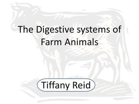 The Digestive systems of Farm Animals