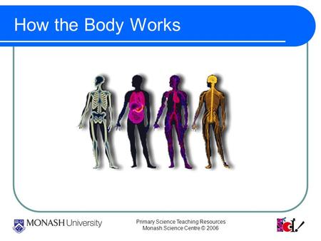 Primary Science Teaching Resources Monash Science Centre © 2006 How the Body Works.