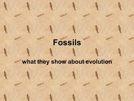 Fossils what they show about evolution Today you will be introduced to the job of a Paleontologist What is a Paleontologist? What is a Paleontologist?