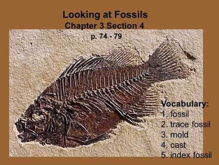 Vocabulary: 1. fossil 2. trace fossil 3. mold 4. cast 5. index fossil Looking at Fossils Chapter 3 Section 4 p. 74 - 79.