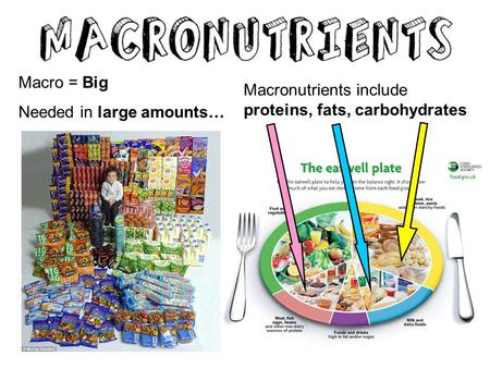 Macro = Big Needed in large amounts… Macronutrients include proteins, fats, carbohydrates.