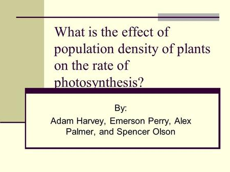 What is the effect of population density of plants on the rate of photosynthesis? By: Adam Harvey, Emerson Perry, Alex Palmer, and Spencer Olson.