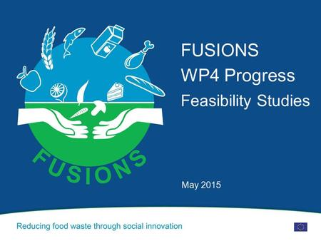 FUSIONS WP4 Progress Feasibility Studies May 2015.