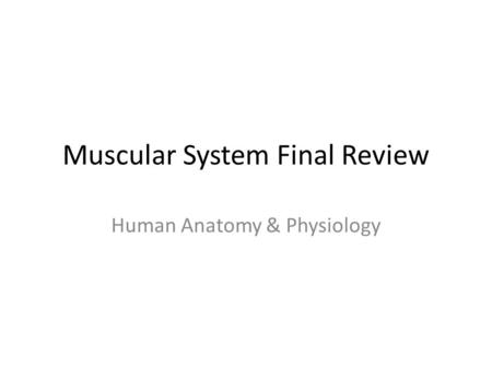 Muscular System Final Review Human Anatomy & Physiology.