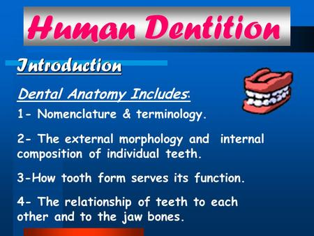 Human Dentition Introduction Dental Anatomy Includes: 1- Nomenclature & terminology. 2- The external morphology and internal composition of individual.