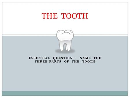 ESSENTIAL QUESTION : NAME THE THREE PARTS OF THE TOOTH THE TOOTH.