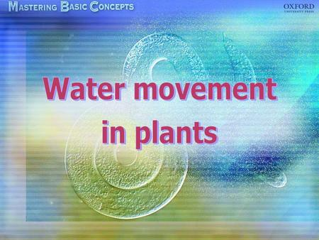Loss of water in plants Transpiration through stomata Replacement of water loss Transpiration pull Factors affecting transpiration Uptake of water by.