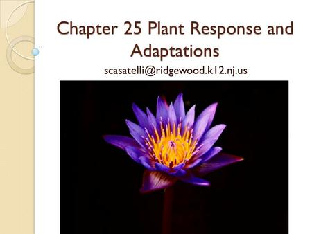 Chapter 25 Plant Response and Adaptations