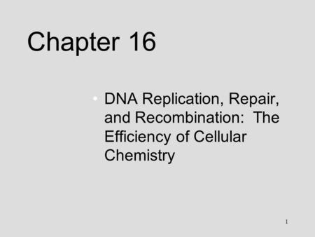 1 Chapter 16 DNA Replication, Repair, and Recombination: The Efficiency of Cellular Chemistry.