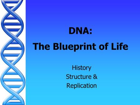 DNA: The Blueprint of Life History Structure & Replication.