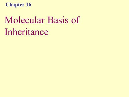 Chapter 16 Molecular Basis of Inheritance. Brainstorm What have we already learned about DNA this semester?