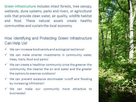 Green infrastructure includes intact forests, tree canopy, wetlands, dune systems, parks and rivers, or agricultural soils that provide clean water, air.