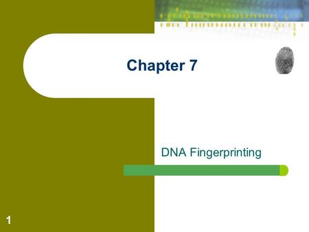 1 Chapter 7 DNA Fingerprinting. Forensic Science: Fundamentals & Investigations, Chapter 7 2 Introduction: Except for _____________, no two people on.