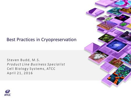 Best Practices in Cryopreservation Steven Budd, M.S. Product Line Business Specialist Cell Biology Systems, ATCC April 21, 2016.