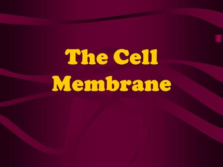 The Cell Membrane. Cell Environment Plasma membrane is the boundary that separates cells from their environment. Its function is to regulate what enters.