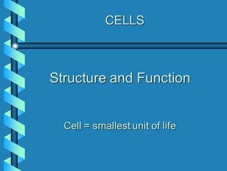CELLS Structure and Function Cell = smallest unit of life.