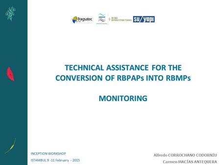 TECHNICAL ASSISTANCE FOR THE CONVERSION OF RBPAPs INTO RBMPs MONITORING INCEPTION WORKSHOP ISTAMBUL 9 -11 February - 2015 Alfredo CORROCHANO CODORNÍU Carmen.