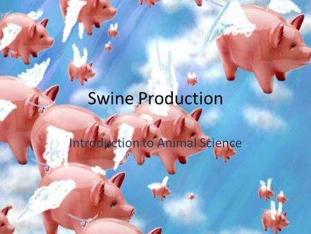 Swine Production Introduction to Animal Science. Swine Terminology Piglet – A baby pig.
