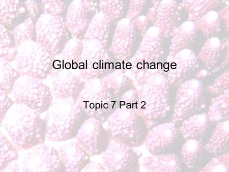 Global climate change Topic 7 Part 2. The oceans and the carbon cycle.