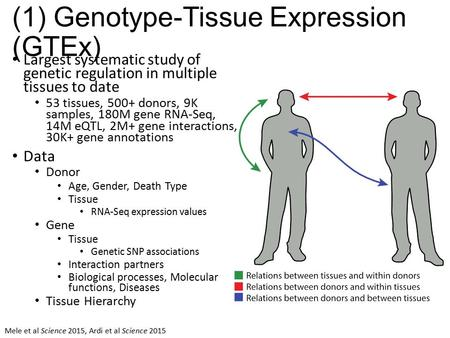 (1) Genotype-Tissue Expression (GTEx) Largest systematic study of genetic regulation in multiple tissues to date 53 tissues, 500+ donors, 9K samples, 180M.