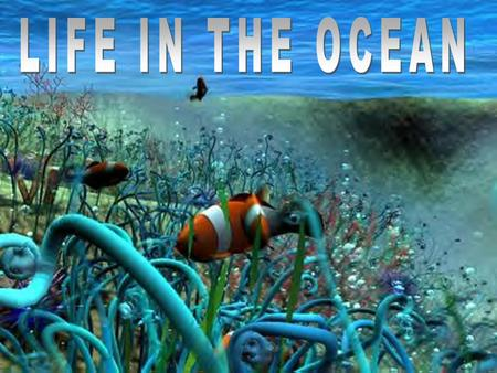 LIFE IN THE OCEAN. Limiting Factors A limiting factor is a factor found in the environment that can be harmful if present in quantities that are too large.