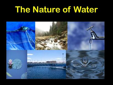 The Nature of Water Compare and contrast the general structures of plant and animal cells. Compare and contrast the general structures of prokaryotic and.