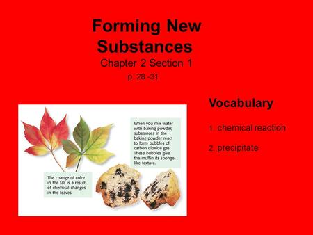 Forming New Substances Chapter 2 Section 1 p. 28 -31 Vocabulary 1. chemical reaction 2. precipitate.