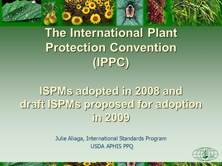 The International Plant Protection Convention (IPPC) ISPMs adopted in 2008 and draft ISPMs proposed for adoption in 2009 Julie Aliaga, International Standards.