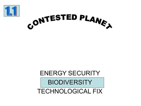 ENERGY SECURITY BIODIVERSITY TECHNOLOGICAL FIX. Can you….. a)Convert this text to a simple flow diagram?