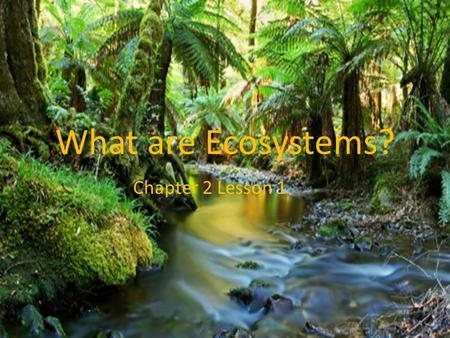 What are Ecosystems? Chapter 2 Lesson 1. Ecosystem An ecosystem is an area where organisms interact with one another as well as with the nonliving parts.