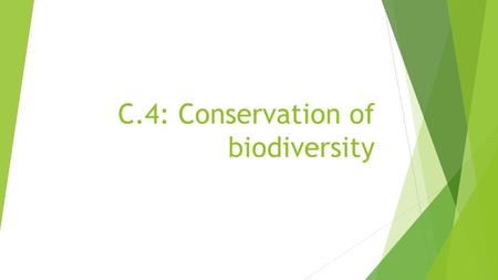 C.4: Conservation of biodiversity. BIODIVERSITY Defined as the variety of life! Biodiversity is essential to the health of ecosystems. Biodiversity within.