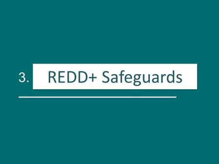 3. Salvaguardas para REDD+ REDD+ Safeguards. Activity Identification of REDD+ risks and opportunities RisksOpportunities.
