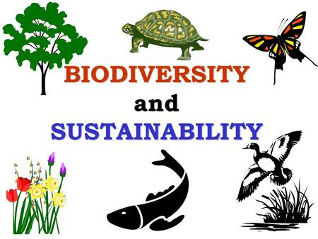 BIODIVERSITY and SUSTAINABILITY. Outline What is biodiversity? What is sustainability? How does biodiversity contribute to sustainability?