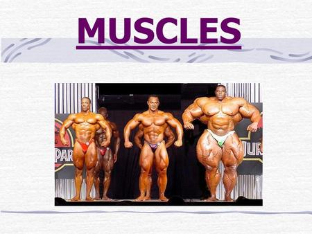 MUSCLES 1. There are over 600 muscles in the body. 2. All muscles contract (shorten) only 3. There are 3 kinds of muscles.
