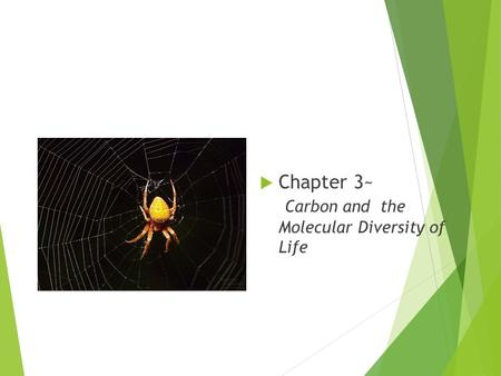  Chapter 3~ Carbon and the Molecular Diversity of Life.