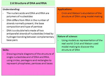2.6 Structure of DNA and RNA
