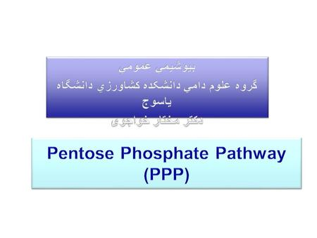 glycogen PPP The pentose phosphate pathway (PPP) is the source of ribose (deoxyribose), and NADPH. NADPH is required for biosynthesis. PPP Shunt.
