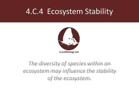4.C.4 Ecosystem Stability The diversity of species within an ecosystem may influence the stability of the ecosystem.