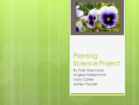 Planting Science Project By Tyler Greynolds Angela Hatzantonis Molly Carter Ashley Fackler.