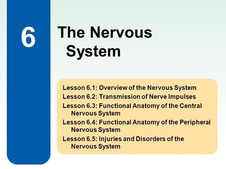 6 Lesson 6.1: Overview of the Nervous System Lesson 6.2: Transmission of Nerve Impulses Lesson 6.3: Functional Anatomy of the Central Nervous System Lesson.