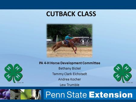 CUTBACK CLASS PA 4-H Horse Development Committee Bethany Bickel Tammy Clark Eichstadt Andrea Kocher Lew Trumble.