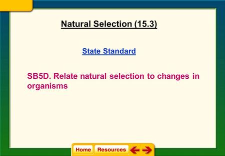 State Standard SB5D. Relate natural selection to changes in organisms Natural Selection (15.3)