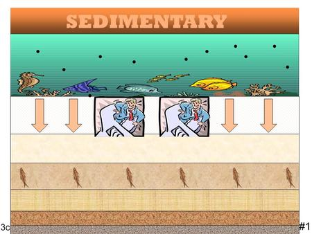 SEDIMENTARY........... #1 3c #1 3c Sedimentary rock is formed when small particles of rock, evaporites or organic material accumulate in layers and are.