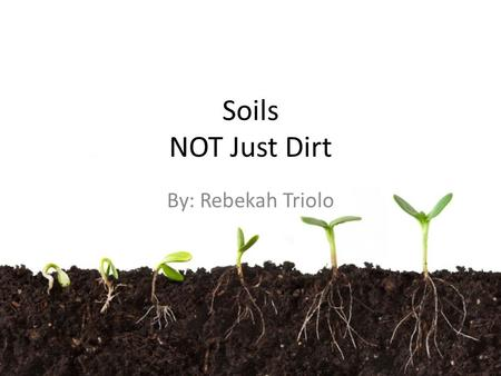 "Soils NOT Just Dirt By: Rebekah Triolo. Defining Soil ""a natural body consisting of layers (horizons) of mineral and/or organic constituents of variable."