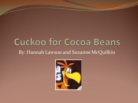 By: Hannah Lawson and Suzanne McQuilkin. Cocoa Bean Terminology Chocolate terminology can be a little confusing. Mostly experts use the term cacao to.