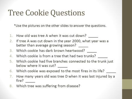 Tree Cookie Questions *Use the pictures on the other slides to answer the questions. 1.How old was tree A when it was cut down? _____ 2.If tree A was cut.