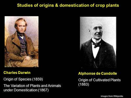 Alphonse de Candolle Origin of Cultivated Plants (1883) Charles Darwin Origin of Species (1859) The Variation of Plants and Animals under Domestication.