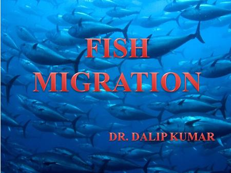 Basic Terms Migration is the movement of large number of animals from one place to another for feeding, reproduction or to escape weather extremes. Shoaling:-